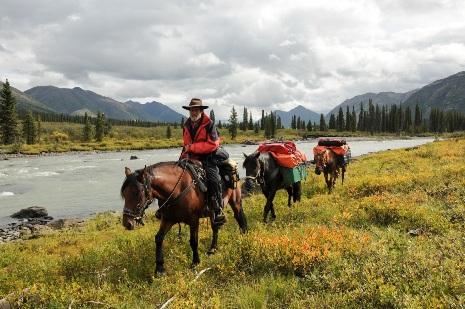 Wildes Kanada & Alaska